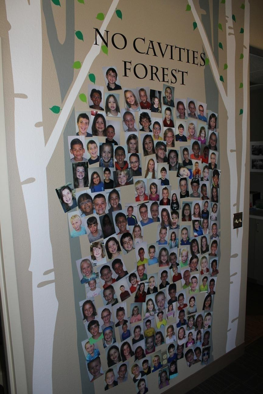 No Cavity Forest Display with photos of young patients | Oakwood Dental